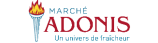 Marche Adonis Flyer