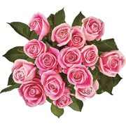 PC More-Than-a-Dozen Roses or PC Signature Gift Bouquet - $20.00